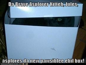 Da Brave Asplorer Kitteh, Jules,  asplores da new pawsiblee ebil box!
