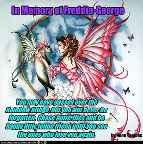 In Memory of Freddie-George