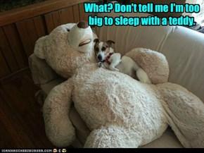 What? Don't tell me I'm too big to sleep with a teddy.