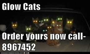 Glow Cats  Order yours now call-8967452