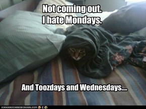 Not coming out. I hate Mondays.