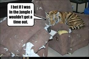 Bad Kitty Good Tiger