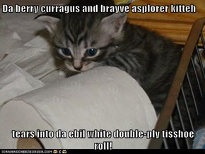 Da berry curragus and brayve asplorer kitteh  tears into da ebil white double-ply tisshoe roll!