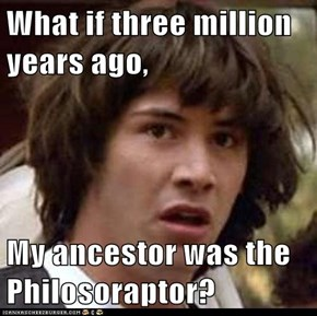 What if three million years ago,  My ancestor was the Philosoraptor?