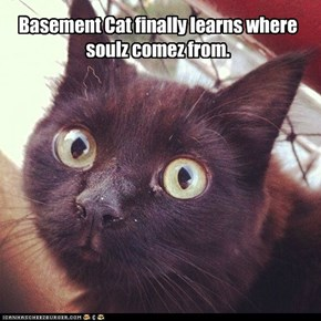 Basement Cat finally learns where soulz comez from.