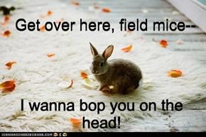 Lazy Bunny Foo Foo