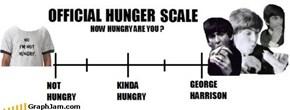 Official Hunger Scale