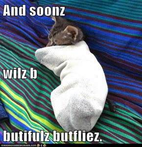 And soonz  wilz b butifulz butfliez.