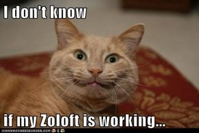 I don't know  if my Zoloft is working...