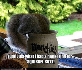 Yum! Just what I had a hankering for... SQUIRREL BUTT!