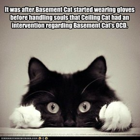It was after Basement Cat started wearing gloves before handling souls that Ceiling Cat had an intervention regarding Basement Cat's OCD.