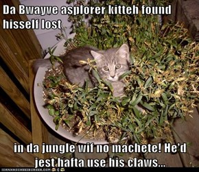 Da Bwayve asplorer kitteh found hisself lost  in da jungle wif no machete! He'd jest hafta use his claws...