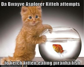 Da Bwayve Asplorer Kitteh attempts  to ketch kitten-eating piranha fish