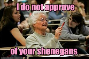 I do not approve of your shenegans