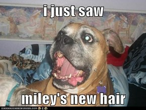 i just saw  miley's new hair
