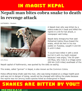 In Maoist Nepal, Snakes Are Bitten By YOU!!