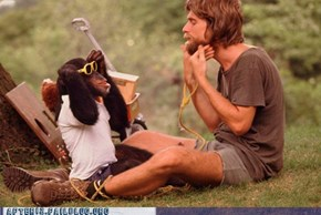 """Crunk Critters: Pretty Sure This is How """"Planet of the Apes"""" Started"""