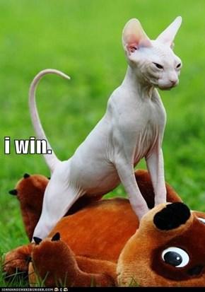 i win.