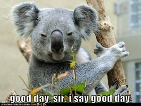 good day, sir. i say good day.