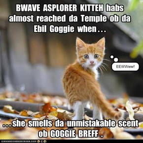 New Movie: BWAVE ASPLORER KITTEH an da Temple ob da Ebil Goggie