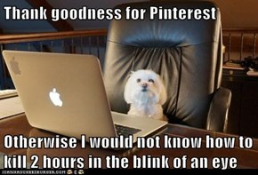 Thank goodness for Pinterest  Otherwise I would not know how to kill 2 hours in the blink of an eye