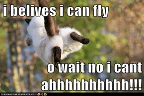 i belives i can fly  o wait no i cant ahhhhhhhhhh!!!