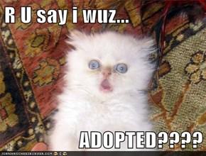R U say i wuz...  ADOPTED????