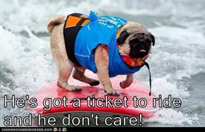 He's got a ticket to ride and he don't care!