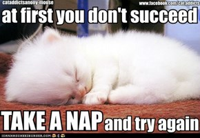 And if That Still Doesn't Work?  Take Another Nap!