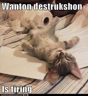 Wanton destrukshon  Is tiring