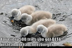 For every 500 tries you get BETA instead of real cheezburger