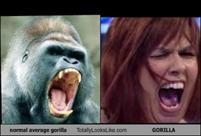 normal average gorilla Totally Looks Like GORILLA