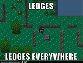 LEDGES    LEDGES EVERYWHERE