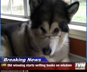 Breaking News - Old wisedog starts writing books on wisdom