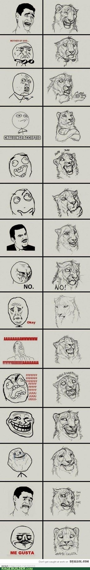 Lion Rage Faces