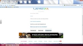 Cleverbot the sexist