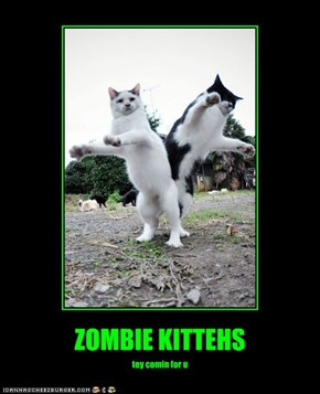 ZOMBIE KITTEHS