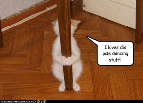 I loves dis pole dancing stuff!