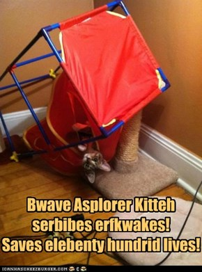 Bwave Asplorer Kitteh saves lives!