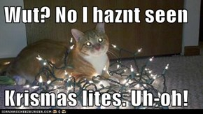Wut? No I haznt seen  Krismas lites. Uh-oh!