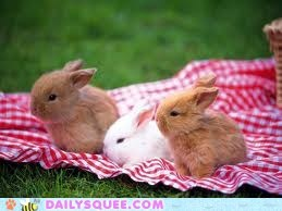 Bunday: Lunch Time