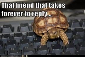 That friend that takes forever to reply...