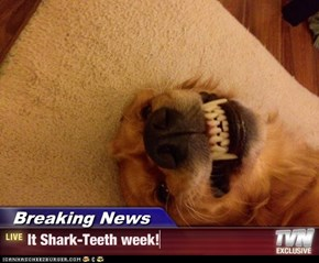 Breaking News - It Shark-Teeth week!