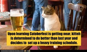 Upon learning Catoberfest is getting near, kitteh is determined to do better than last year and decides to  set up a heavy training schedule.