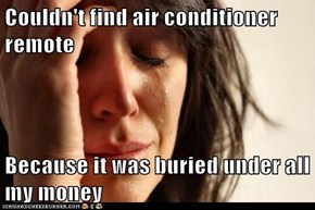 Couldn't find air conditioner remote  Because it was buried under all my money