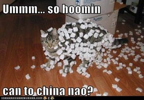 Ummm... so hoomin  can to china nao?