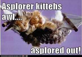 Asplorer kittehs awl....  asplored out!