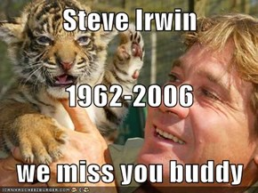 Steve Irwin 1962-2006 we miss you buddy