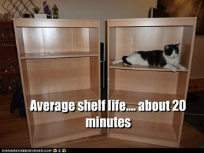 Average shelf life.... about 20 minutes
