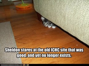 Sheldon stares at the old ICHC site that was good, and yet no longer exists.